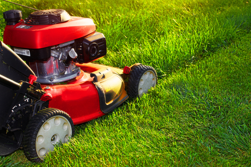 5-STEP LAWN CARE PROGRAM IN BILLINGS, MT